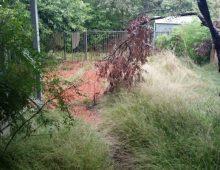 Acre-Lawns-Garden-Cleanup1