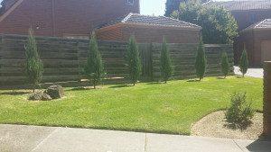 Lawn Mowing Mitcham