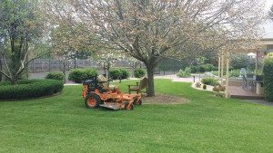 Ride On Mowing - Acre Lawns