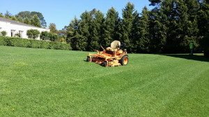 Ride On Mowing - Acre Lawns 2