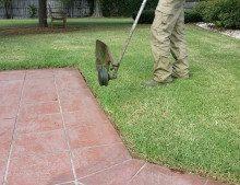 Edging-Lawn
