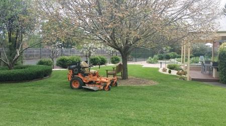 lawn mowing tasks